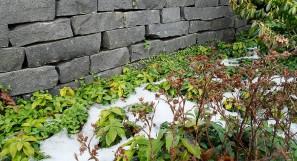 Basalt Trockenmauer 8-10